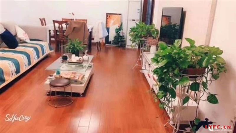 文化公园御园豪装2房/2厅/1卫朝南好房143.8万